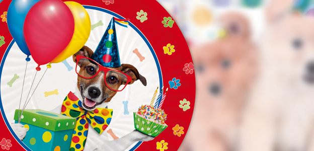 Festa di compleanno per il tuo amico a 4 zampe